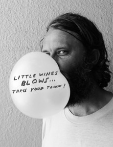 little wings